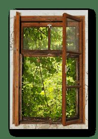 rotten window